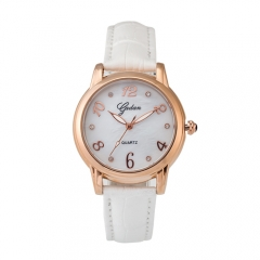 Rose Gold Casual Quartz swiss movement waterproof  Watch for lady